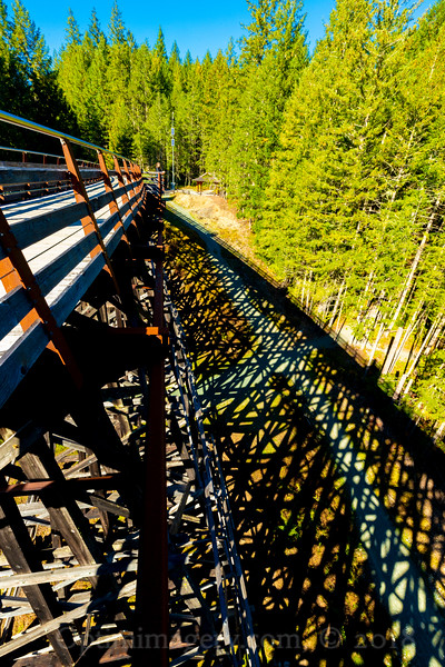 TRESTLE AND SHADOWS
