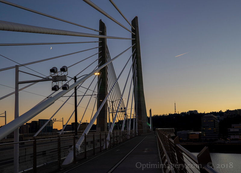 """Tilikum is the Chinook word for people, so this is called """"The People's Bridge."""""""
