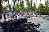 See the Green Sea Turtle sleeping on the beach below the tourists?
