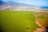 Our shadow on sugar cane as we approach Kahului