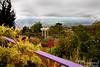 Ali'i Kula Lavender Gardens.  Gorgeous garden grounds and view down toward Kahului.