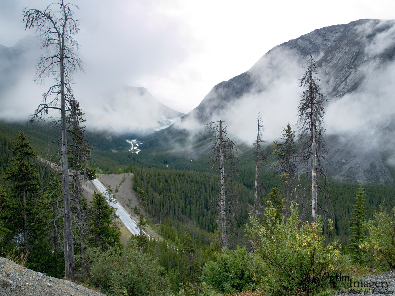 Looking back south, toward Banff, on the Icefields Parkway.