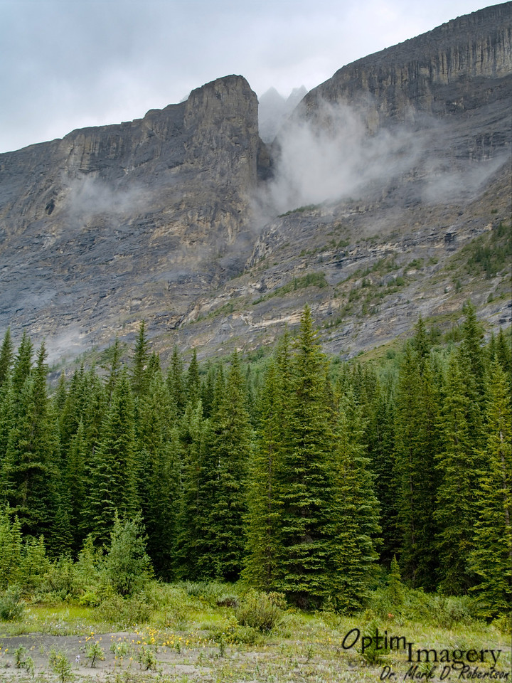 Cliffs and mist to the east of the Icefields Parkway.