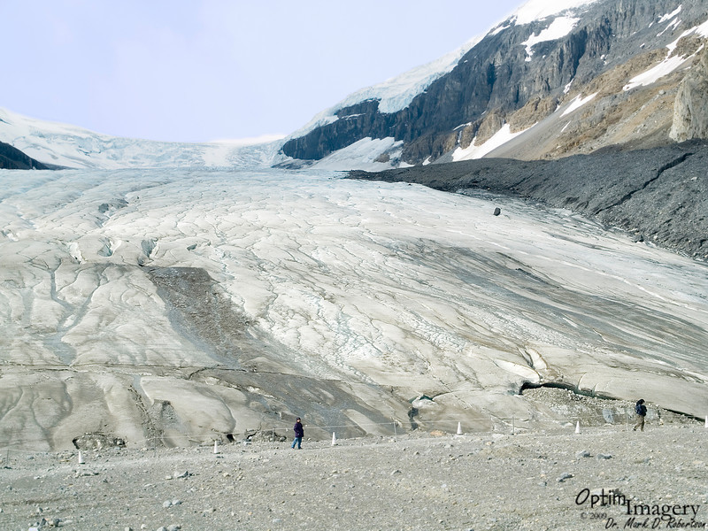 Athabasca Glacier flows out of the Columbia Icefield, a mass of ice 325 square kilometers (125 square miles) in area and up to 365 meters (1,197 feet) in depth.  The circumference of the Columbia Icefield is bordered by the peaks of 11 mountains.  It receives about 7 meters (23 feet) of snow per year.  The snow builds up and compresses over the years to form ice, which overflows out the valleys between the peaks to form glaciers such as this breathtaking one in front of you.