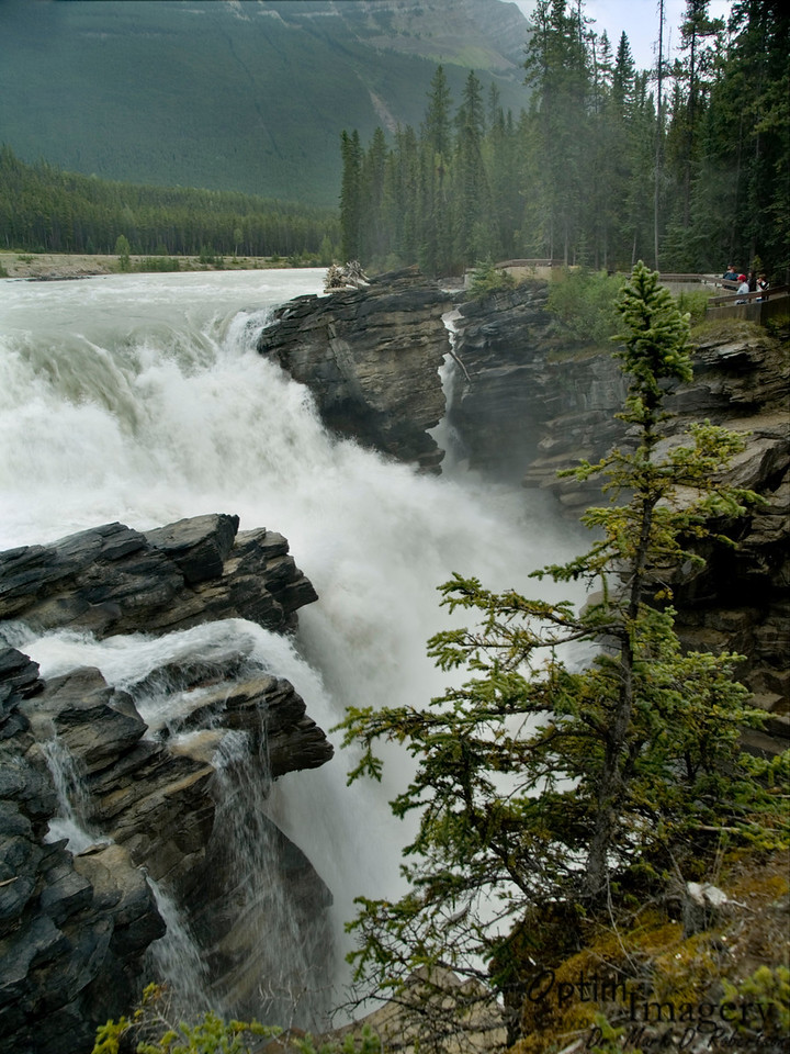 """Down the road just a little further is Athabasca Falls.  The name Athabasca comes from the Cree word athapask-a-aw, which was actually first used to name a nearby lake (which we did not visit).  It means """"grass or reeds here and there."""""""