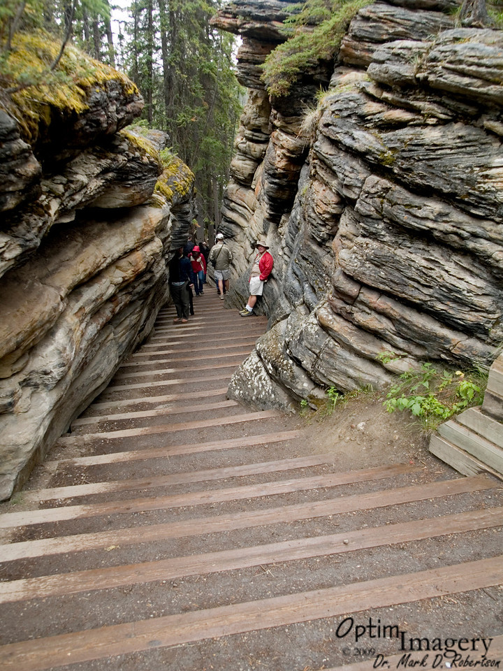 These totally cool gullies running roughly parallel to the channel of Athabasca Falls are old channels, long abandoned by the river.  Of course, the evenly-spaced stair steps came a bit later.