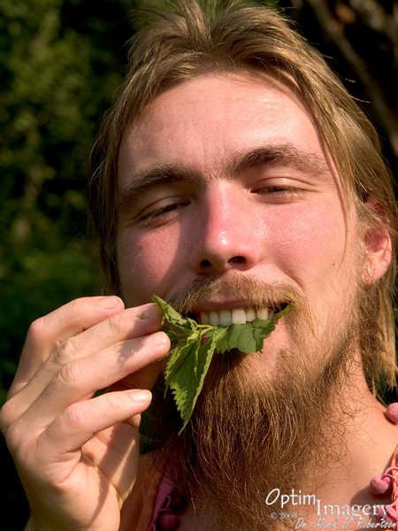 He finds it to be a yummy salad green!  How he can do this without being stung, I'm not sure.  It is supposed to be an extremely nutritious green, however.