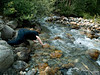 Bri gets her hands wet in a tributary entering the Illecillewaet River.