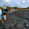 How do you mark a trail on fresh lava?  Yellow paint and posts, I guess.  It works.  Follow the yellow striped trail.