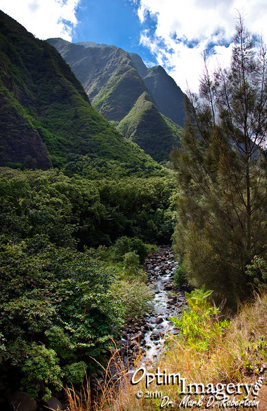 "Iao Valley (pronounced EE-ow;  Means ""cloud supreme"")."