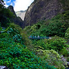 Here in Iao State Park, the trail up to the Iao Needle parallels Iao Stream, so one can make a bit of a loop walk by taking the trail up and the stream back.