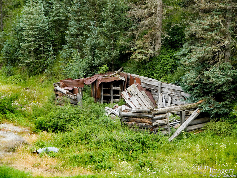 I thought that the pantry in this cabin was pretty impressive.  Yep:  These old sentinels of the days of yore are slowly loosing their voices, vanishing into the earth, the last traces of a bygone era erased forever.  Thanks, Mom and Dad, for the excursion and chance to visit the past.