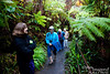 Now join us for a walk to and through Thurston Lava Tube.