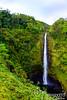 442-foot-tall Akaka Falls.