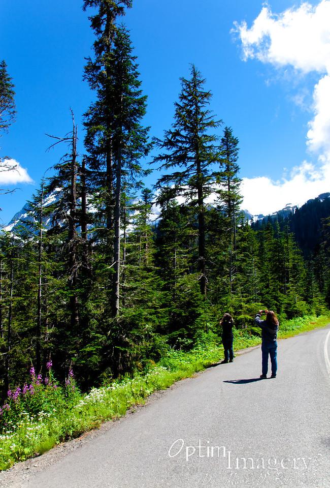 Photographing Mount Shuksan.