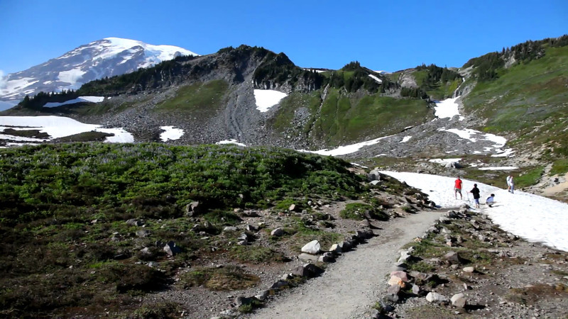 Trail above Paradise, then ending with marmot along the highway.