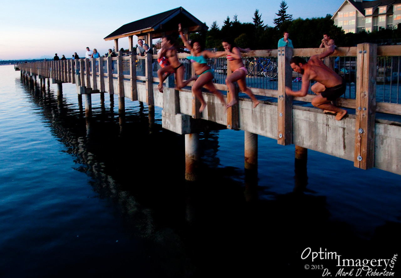 Mass jump!<br /> <br /> Well, that's the end of this day.  Next Gallery will take us up toward Mount Baker!