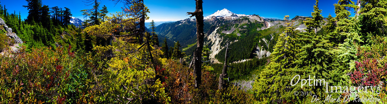 23-photo panorama of Mount Baker and surrounding area from Artist Point.