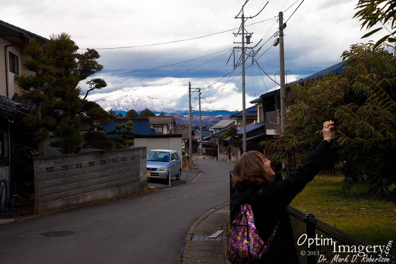 AFTER the previous photo, we spent another night at Shimaya, and are now on our way toward Nagano.  We decided to stop and look at the little town of Obuse (notice the picturesque mountains in the background), known for wood block art and for what Bev is taking a photo of......