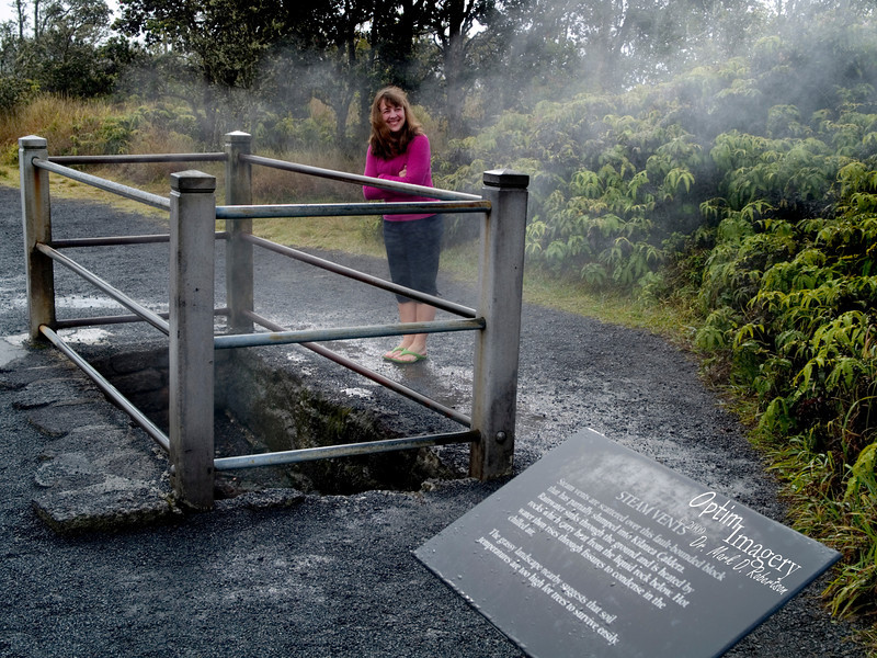 """Behind Bev, through the trees, is the Kilauea Caldera.  The sign here says """"Steam vents are scattered over this fault-bounded block that has partially slumped into Kilauea Caldera.  Rainwater sinks through the ground and is heated by rocks which carry heat from the liquid rock below.  Hot water then rises through fissures to condense in the chilled air.""""  So, we are standing up on a high ridge which has already """"partially slumped,"""" and which is riddled with holes penetrating down to the heated rock below.  Fine with me if there is no further """"slumping"""" today!"""