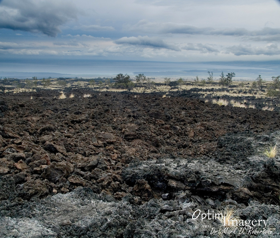 We are heading northwest from Kona, on a trip to Waimea (near the north part of the island) and then on to Hilo.  Here, you are looking northwest.  You can see several different lava flows.  Even on this side of the island, many of these flows occurred as recently as the mid 1800's (we'll get to some newer ones in a later album).  You can see Maui in the distance, through the clouds (upper left portion of the photo).  That's where the professional seminar will be next year, hopefully with me in attendance!