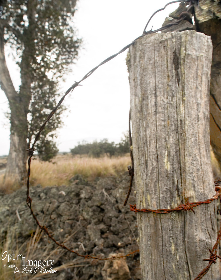 Old corner post and wire on lava.