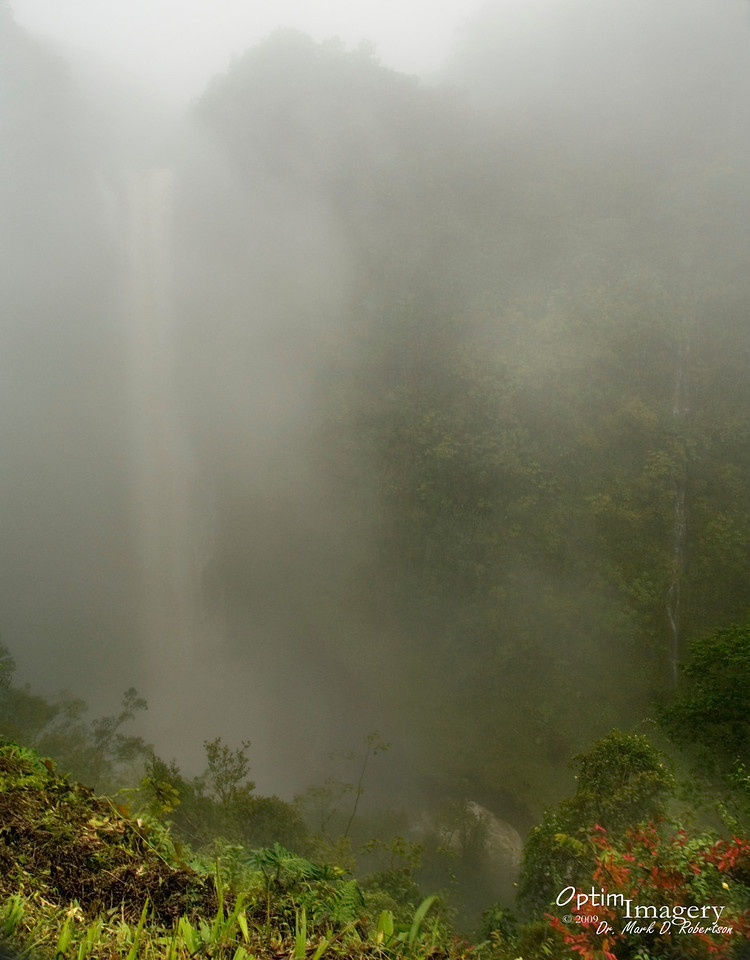 And there is Akaka Falls.  Actually there are a couple of falls in the photo:  A big one to your left and a small one to your right.  We stood there for a while to be able to see it THIS good.  Awesome thunderous rumble and refreshing mist while we stood there, though!