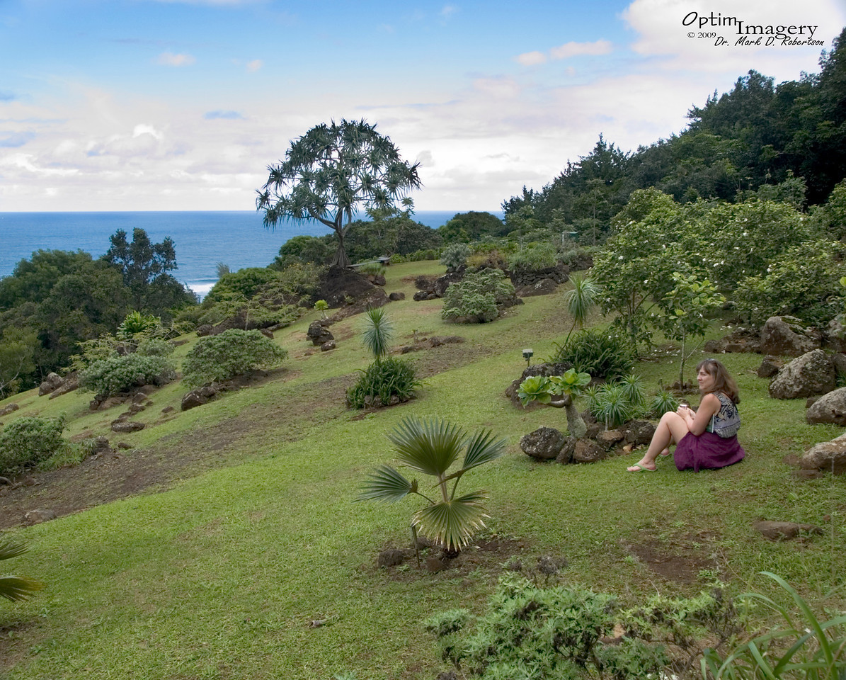After a nice sojourn through a couple of different types of forest (one with native plants and one with invasive ones), the trail opens up to a nice, high, landscaped expanse offering a beautiful view to the north over the Pacific Ocean.