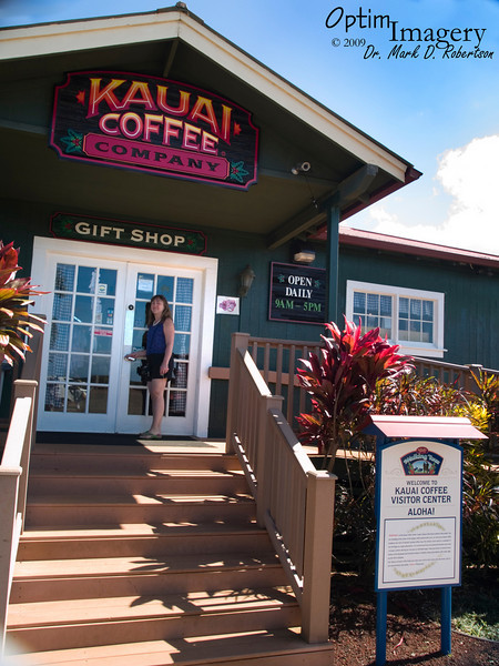 """It was quite a surprise to me, because I have seen Kona Coffee for sale everyplace from Japan to Saipan to Guam to mainland U.S.A., and don't recall ever seeing Kauai Coffee in any of those places.  But this one estate on Kauai, with 3,100 acres, claims to produce 60% of all coffee produced in Hawaii.  The other surprise to me was that from the Kauai Coffee I tasted, compared with the Kona Coffee we drank on Big Island, I strongly preferred the Kauai Coffee.  For any of you back """"home"""" who received Kauai Coffee, of course this is where it came from:  Where it was grown, where it was harvested, and where it was roasted, processed, and packaged.  These are truly """"estate"""" coffees."""