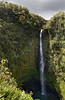 North of Hilo, just outside of the small village of Honomu, is spectacular Akaka Falls.