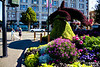 I love the Orca topiary just north of the Empress.