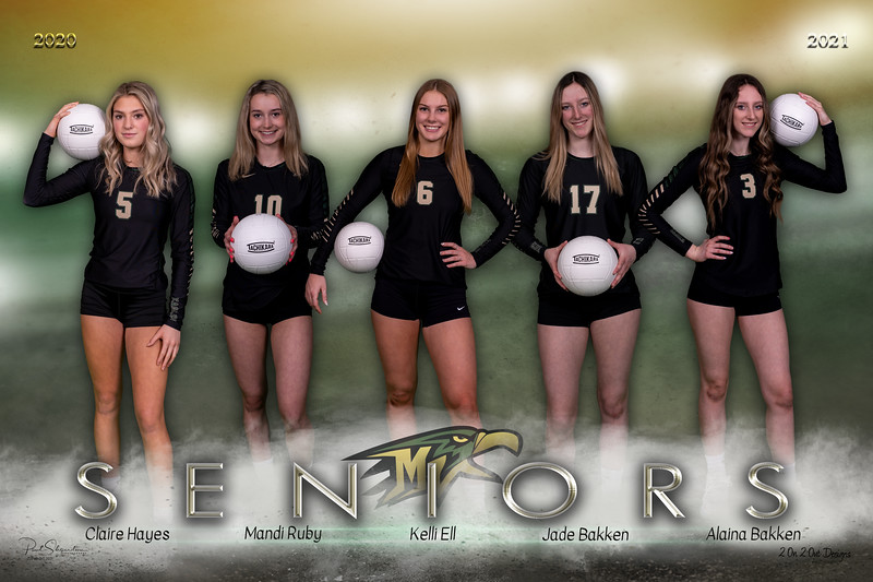 Volleyball Composite Team Image