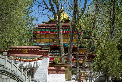 037 Lhasa Luhkang Temple © Bickerstaff