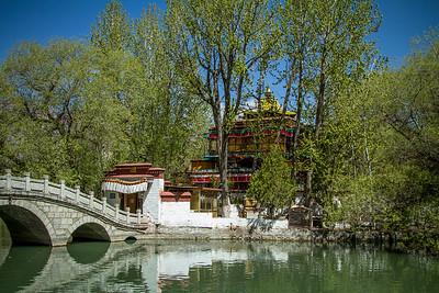 034 Lhasa Luhkang Temple © Bickerstaff