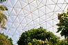 Epcot Greenhouse