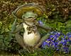 Frog Garden Ornament II  865_20080410-2-2