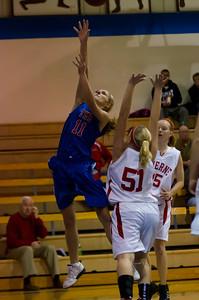20120130_Girls_Basketball_A_Luverne_023_Noiseware4Full