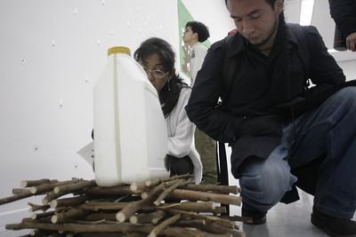 Banco de semillas (movimiento de liberacíon de la planta de coca) (Visual Arts): Wilson Díaz