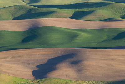 Eastern Washington, Palouse Area
