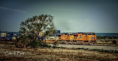 DESSERT TRAIN