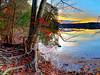 lake Brandt Eastern shore