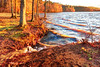 lake Brandt marina windy shore