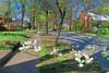 Spring on N Eugene St