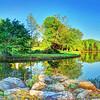 Our backyard pond