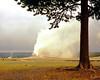 1968 WY Yellowstone old faitful