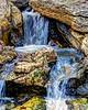 Bog Garden Serenity Falls