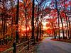 November sunset at  lake Brandt marina