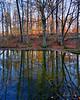 Bog Garden at sunset
