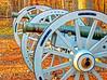 Battleground Park field guns
