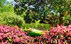 Bicentennial garden